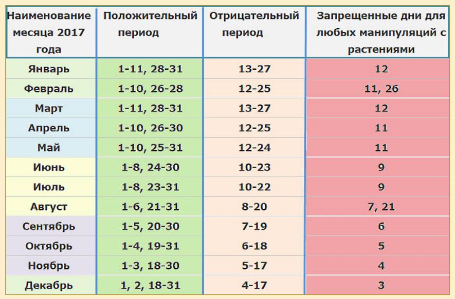 Calendario Lunare Segni Zodiacali.Quando E Meglio Trapiantare I Fiori In Ottobre Calendario
